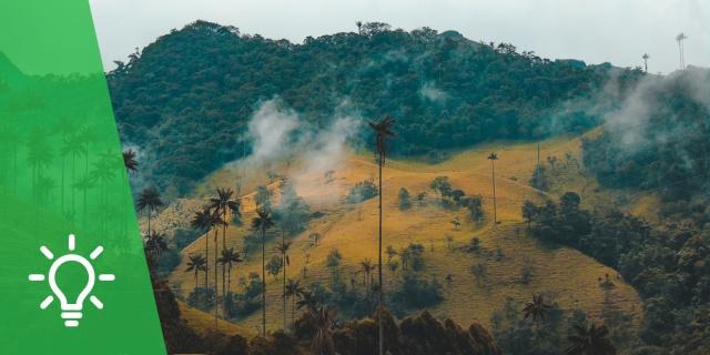Reconciliación con la Creación | La Política Ambiental Colombiana en las dos últimas décadas y Laudato Si´