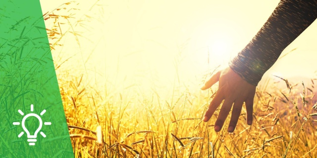 Reconciliación con la Creación | Seminario